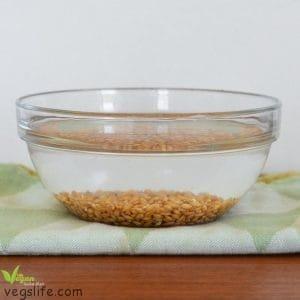 طريقة نقع القمح المبرعم بالماء