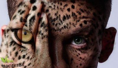 animal-face-695x400