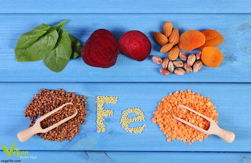 اين يتواجد الحديد في الغذاء النباتي، كيف نحصل على حاجتنا من الحيديد في الغذاء النباتي
