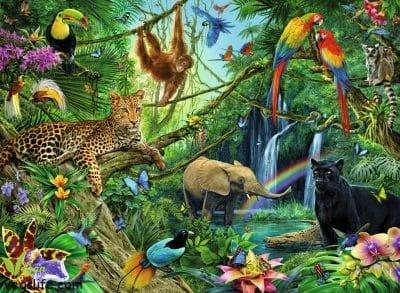وداعاً للحياة البرية، حوالي ثُلثي الحيوانات البرية مُعرضة للإنقراض بحلول 2020 الأنثروبوسين • حياة نباتية موقع ملتقى النباتيين، حياة نباتية من أجل الحيوان الانسان البيئة والسلام